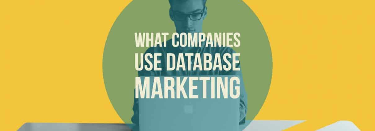 COMPANIES USING DATABASE MARKETING AND THE IMPLEMENTATION OF IT IN THEIR SYSTEM